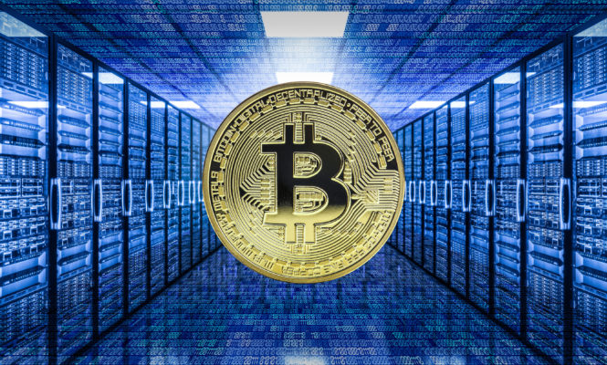 Bitcoin hosting – what is it all about?