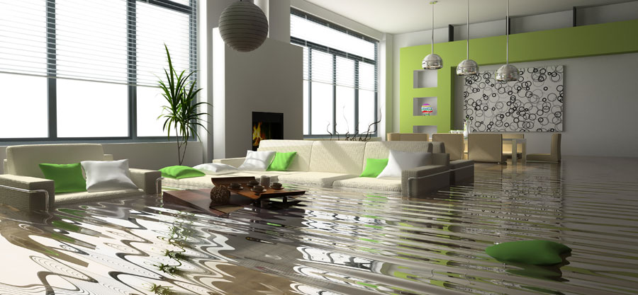 WHEN TO CALL A WATER DAMAGE CLEAN UP SERVICE